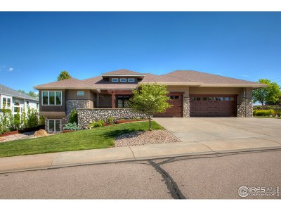 Single Family Home For Sale: 1430 Cactus Ct