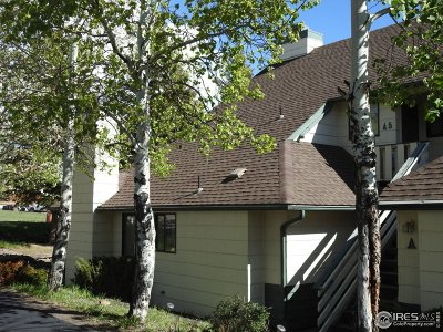 Estes Park Condo/Townhouse For Sale: 1010 S Saint Vrain Ave #A2