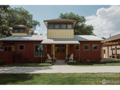 Fort Collins Single Family Home For Sale: 1219 Salmon Run