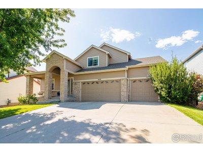 Johnstown Single Family Home For Sale: 3750 Brunner Blvd