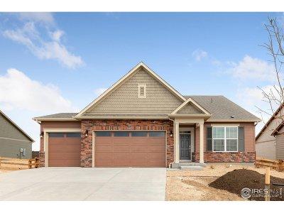 Thornton Single Family Home For Sale: 15586 Spruce Cir
