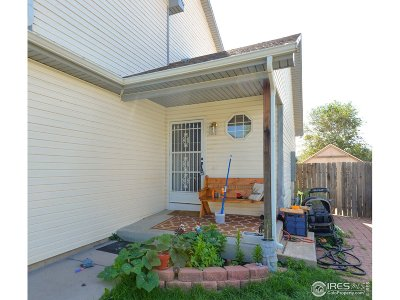 Greeley Single Family Home For Sale: 2035 Birch Ave