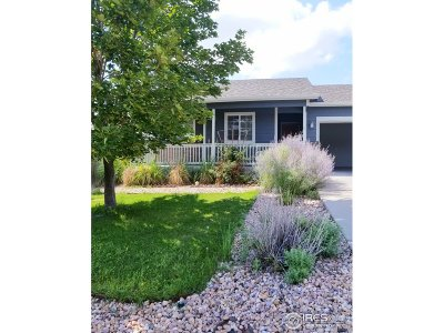 Greeley Single Family Home For Sale: 3025 43rd Ave