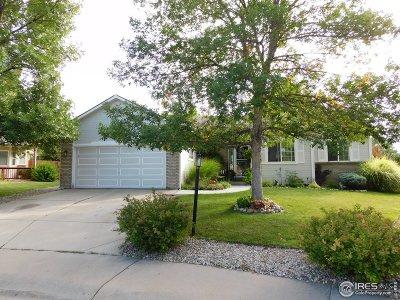 Loveland Single Family Home For Sale: 2953 Vye Ct