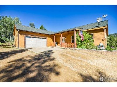 Golden Single Family Home For Sale: 33400 Retrievers Trl
