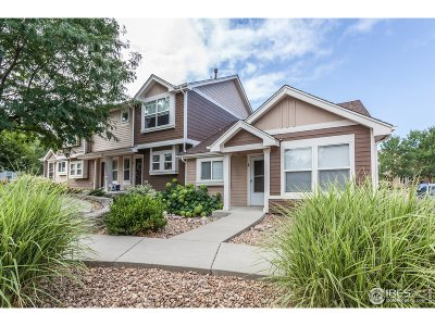 Condo/Townhouse For Sale: 6809 Autumn Ridge Dr #1