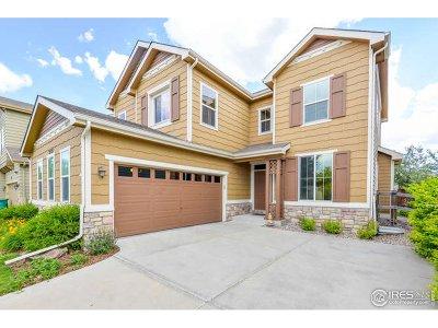 Single Family Home For Sale: 2121 Katahdin Dr