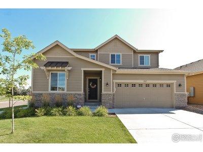 Longmont Single Family Home For Sale: 1827 Sunshine Ave
