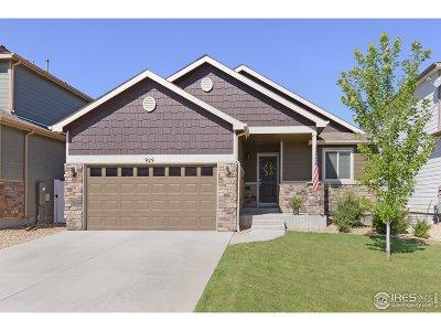 Loveland Single Family Home For Sale: 929 Lepus Dr