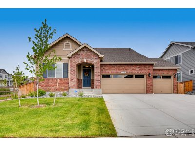 Broomfield Single Family Home For Sale: 17123 Lexington St