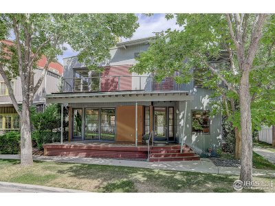 Longmont Single Family Home For Sale: 817 Incorrigible Cir
