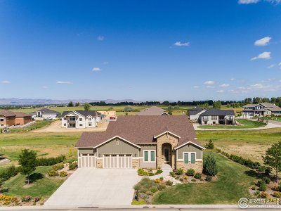 Fort Collins Single Family Home For Sale: 285 Boattail Dr