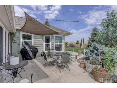 Longmont Single Family Home For Sale: 14153 County Road 5