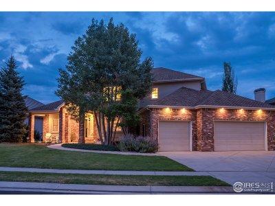 Broomfield Single Family Home For Sale: 3901 Troon Cir