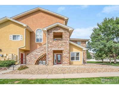 Evans Condo/Townhouse For Sale: 1001 Lucca Dr