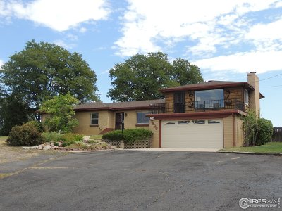 Arvada Single Family Home For Sale: 7590 Wadsworth Blvd