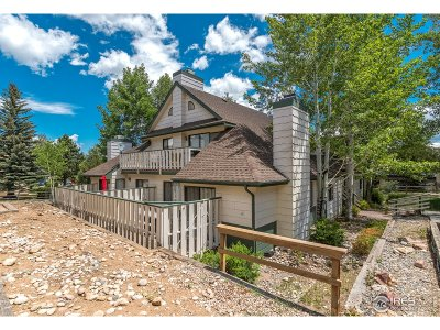 Estes Park Condo/Townhouse For Sale: 1010 S Saint Vrain Ave #2