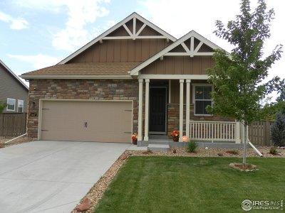 Longmont Single Family Home For Sale: 1447 16th Ave