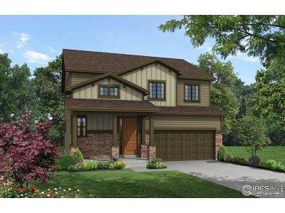 Loveland Single Family Home For Sale: 147 Pamela Dr