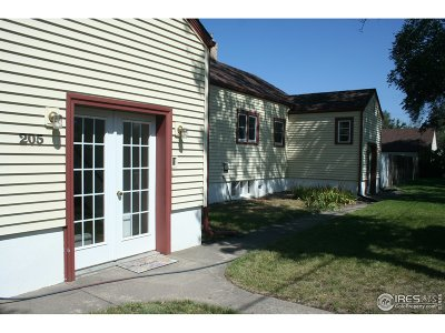 La Salle Single Family Home For Sale: 205 N 3rd St