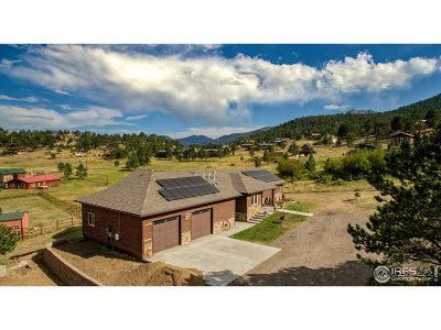 Estes Park Single Family Home For Sale: 1030 Sutton Ln