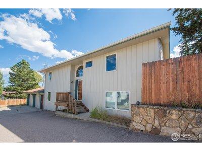 Estes Park Single Family Home For Sale: 408 Elm Ave