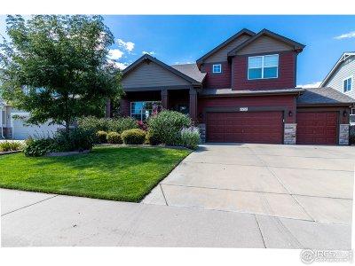Johnstown Single Family Home For Sale: 2410 Black Duck Ave