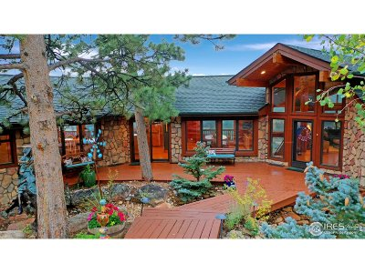 Estes Park Single Family Home For Sale: 344 Curry Dr