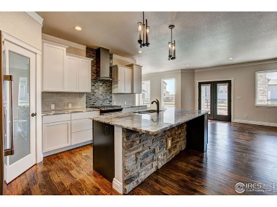 Windsor Single Family Home For Sale: 922 Pitch Fork Dr