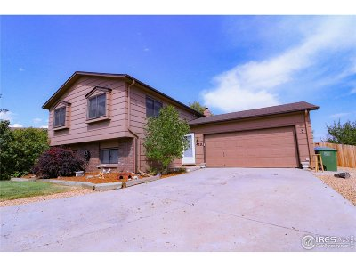 Loveland Single Family Home For Sale: 479 Slippery Elm Ct