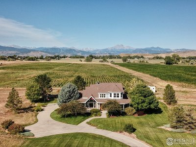 Longmont Single Family Home For Sale: 9400 Mitchell Ct