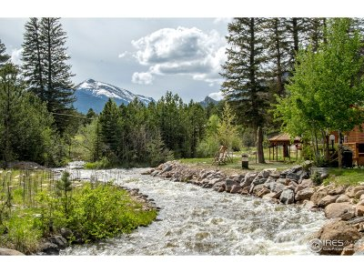 Estes Park Condo/Townhouse For Sale: 1515 Fish Hatchery Rd #AP (7