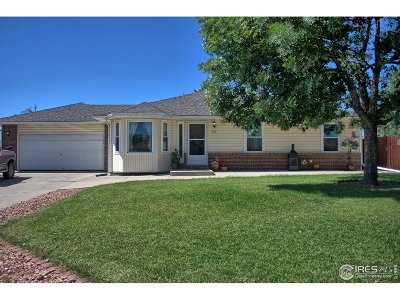 Evans Single Family Home For Sale: 4113 Meadows Ave