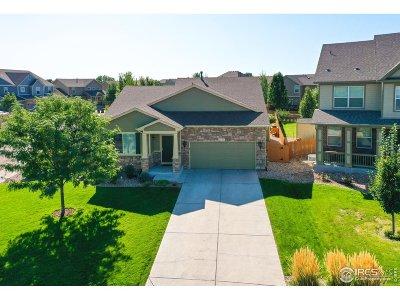 Windsor Single Family Home For Sale: 1577 Millfleet Dr