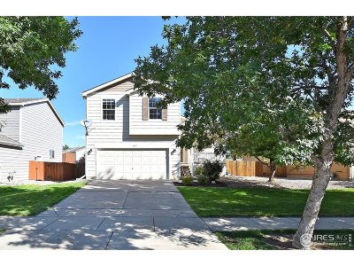 Loveland Single Family Home For Sale: 4097 Georgetown Dr