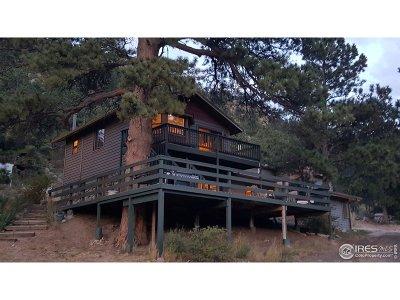Estes Park Single Family Home For Sale: 95 Forgotten Way