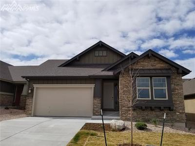 Single Family Home For Sale: 4654 Portillo Place