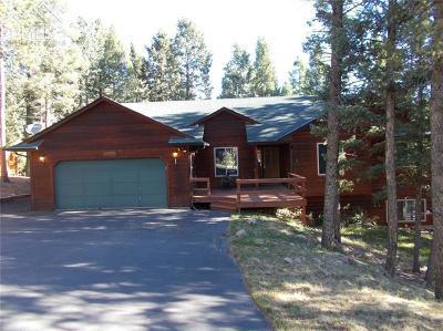 Woodland Park Single Family Home For Sale: 1320 W Midland Avenue