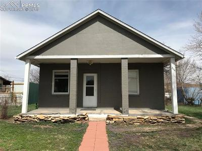Single Family Home For Sale: 204 W 9th Street