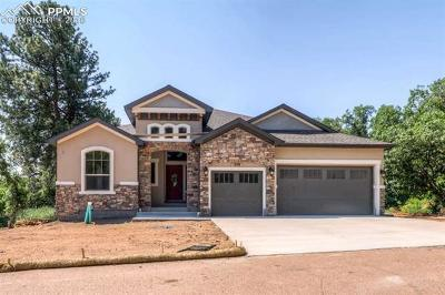 Colorado Springs Single Family Home For Sale: 559 Mountain Pass View
