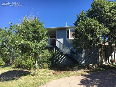 Single Family Home For Sale: 120 Pauma Valley Drive