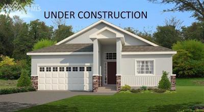 Shiloh Mesa, Shiloh Single Family Home For Sale: 8155 Heathmere Place
