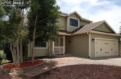 El Paso County Single Family Home For Sale: 11853 Turney Road