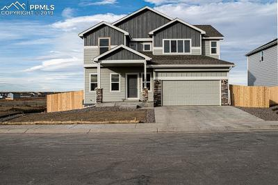Single Family Home Under Contract - Showing: 10832 Matta Drive