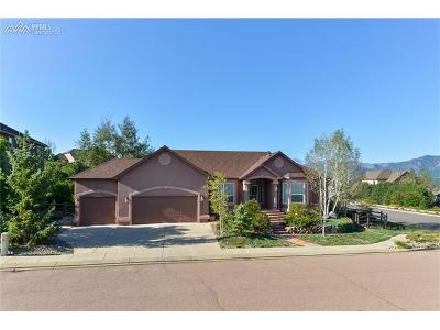 Colorado Springs Single Family Home For Sale: 1101 Glengary Place