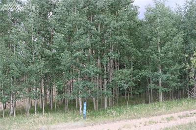 Lake George Residential Lots & Land For Sale: 99 Cheyenne Trail