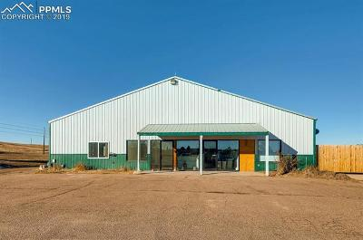 Commercial For Sale: 35570 County 13 Road