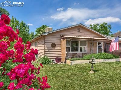 Single Family Home For Sale: 923 Allison Avenue