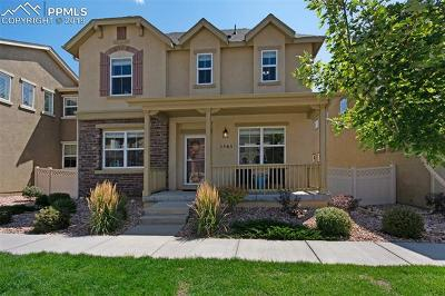 Colorado Springs Single Family Home For Sale: 5565 Sunrise Mesa Drive