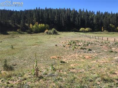 Cripple Creek Residential Lots & Land For Sale: 55 County 1 Road